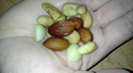 probiotics and heart