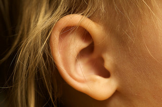 pycnogenol treats tinnitus and vertigo