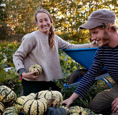 Mary Ellen Chadd harvesting squash
