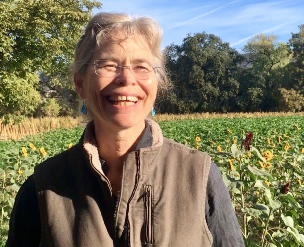 Organic farmer Judith Redmond in her fields