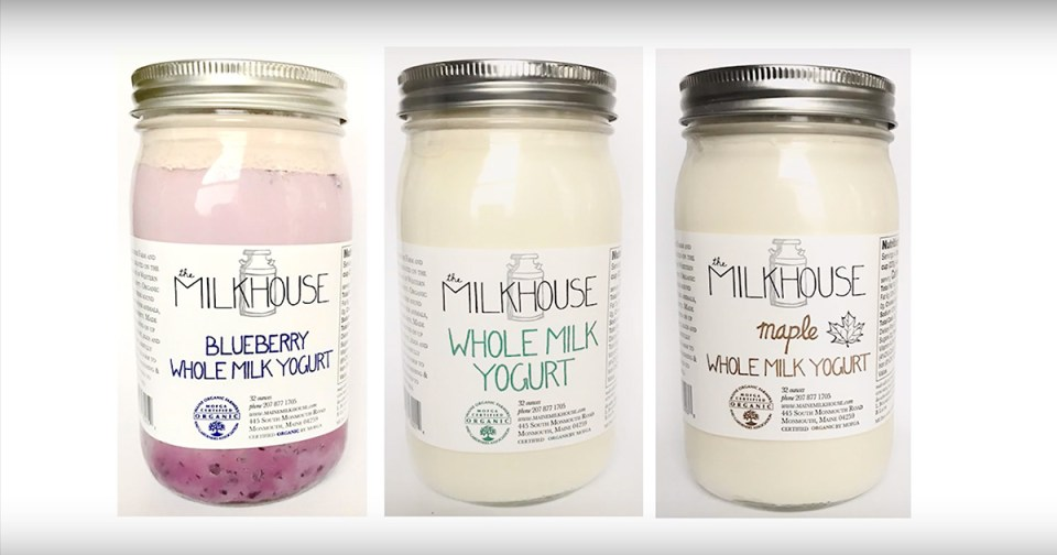 Plain whole milk, wild blueberry, and maple yogurt from the Milkhouse in Monmouth, Maine