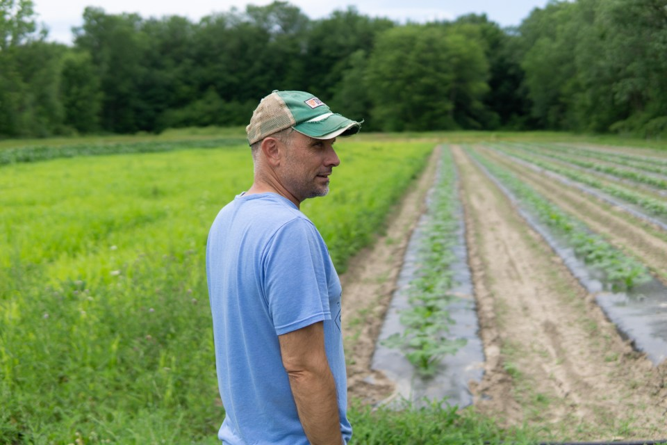 Matt Martin stands in his crop fields at the Martin Family Farm Michigan