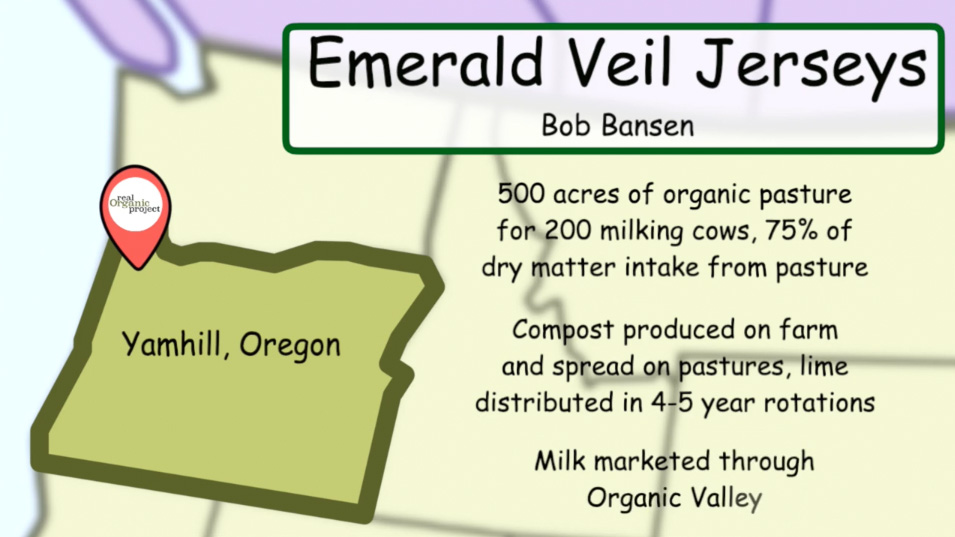 info slide of Emerald Veil Jerseys in Yamhill, Oregon