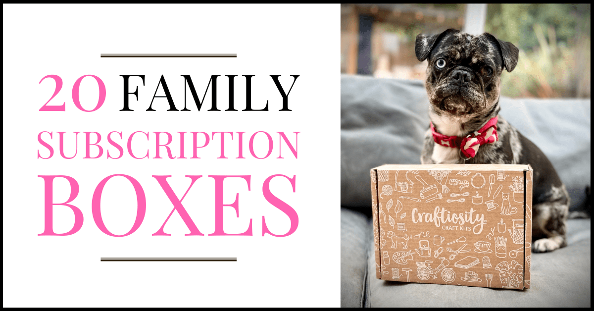 20 FAMILY SUBSCRPTION BOXES