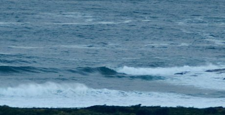 Icy morning wind but a few sets rolling into Dee Why.