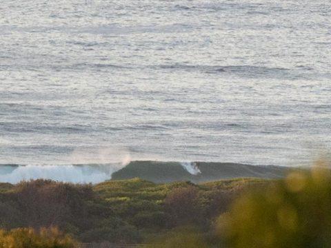 dy beach surfer