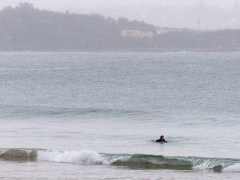 manly surfer