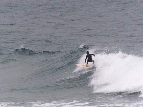 sth curl curl surfer