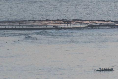 north narrabeen surf