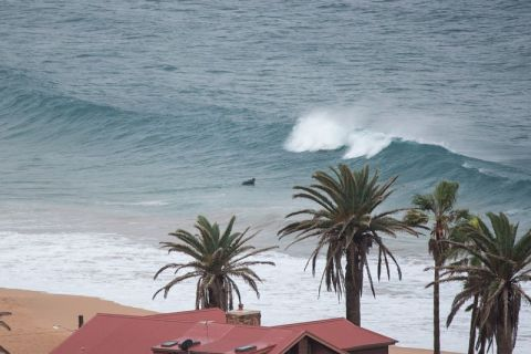 south narrabeen surfer