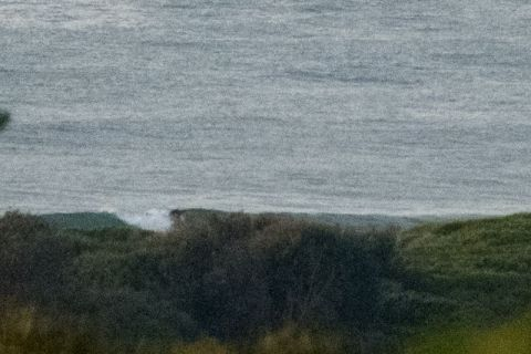 Up the beach a small bump appears at 0700