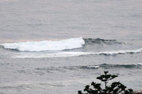 whiterock wave
