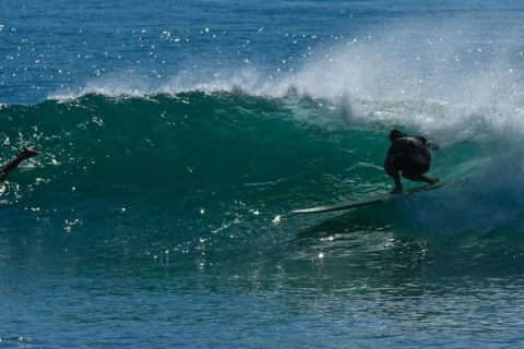 Crescent Head surfer
