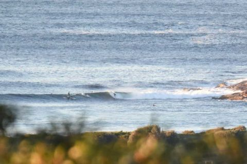 dy point waves
