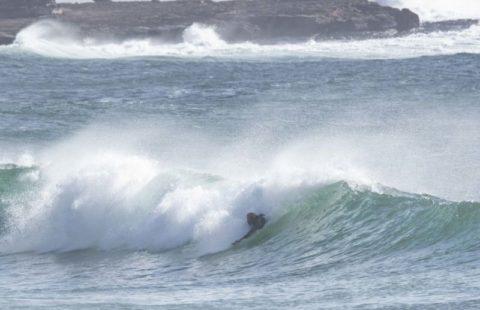 bodysurfer queenscliff
