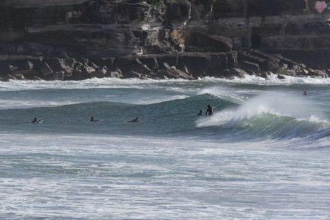 Queenscliff surfers