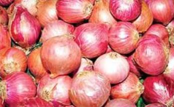Onion scarcity in India, Import from turkey,