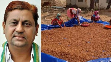 Forest produce, Income with employment, Profit, Minister Akbar,