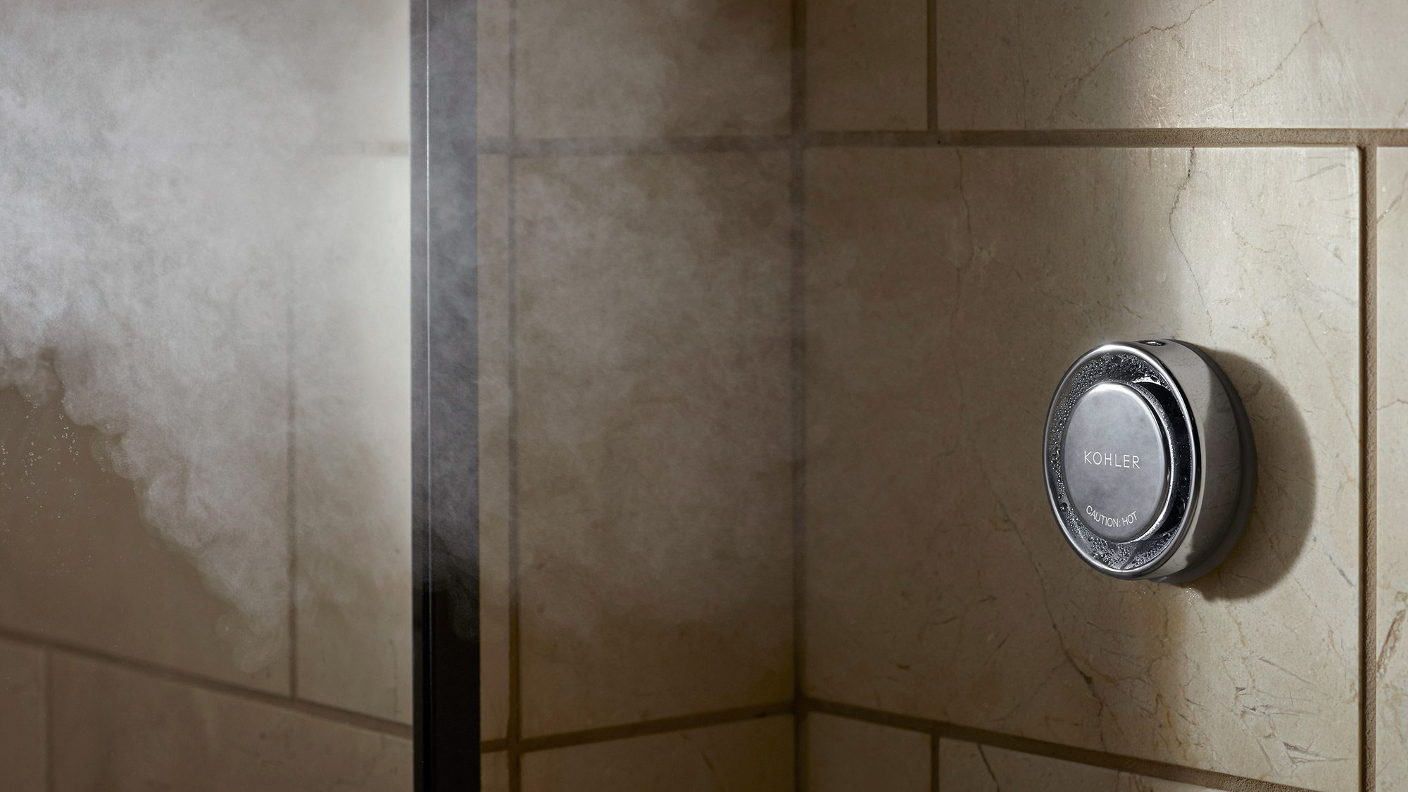 Steam shower generator