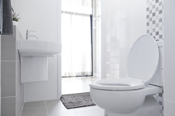 Remodeling 101: Placing the toilet in your bathroom renovation