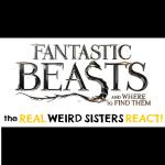 Fantastic Beasts Reaction