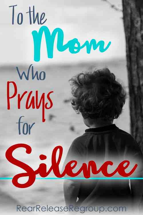 To the mom who prays for silence - finding contentment in the loud seasons with small children. From an empty nest mom.