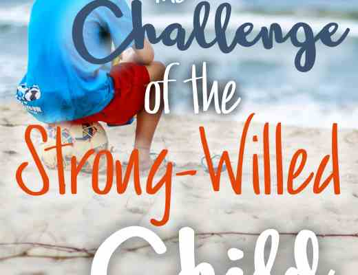 Challenge of the strong-willed child; 6 tips to survival. 6 tips for how I successfully turned the crazy train around and channeled those strong wills in the right direction!