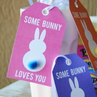 Some Bunny Loves You Tags