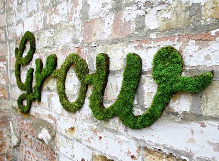 moss graffiti wall