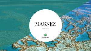 naturalny magnez