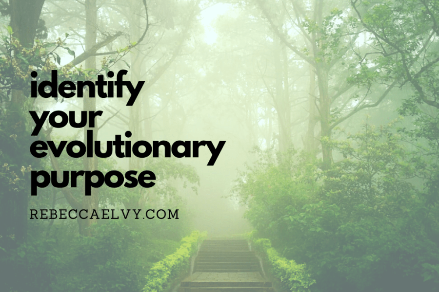 identify your evolutionary purpose heading