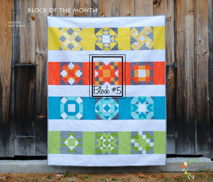 full quilt with block 5 boxed 0127