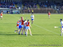 Cork U17 Munster Final 2017 (17)