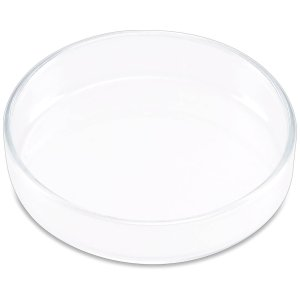 ISTA Shrimp Dish (Glass)