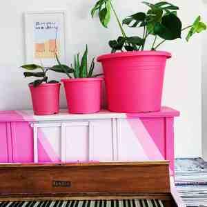large pink plant pot