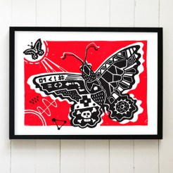 butterfly_framed