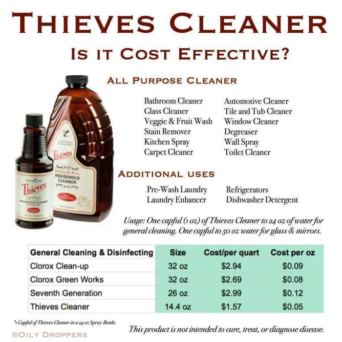 Thieves Household Cleaner Is It Cost Effective