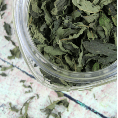 How to Dry Fresh Mint Leaves