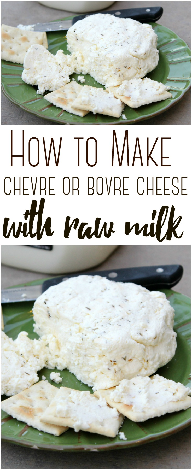 Bovre Cheese (much like homemade chevre cheese is super delicious - and easy to make at home with a gallon of raw cow milk.