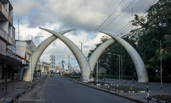 Things to do in Mombasa: Elephant tusks