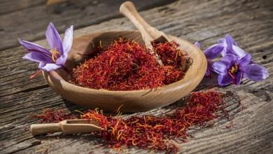 Photo of A complete Guide on saffron