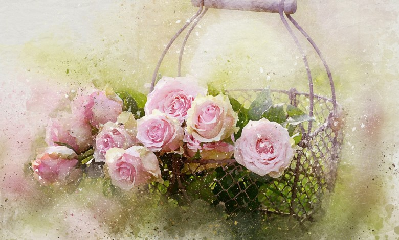 flowers decoration blooms