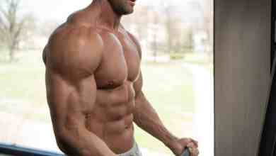Photo of Everything about the Fat burners you need to know
