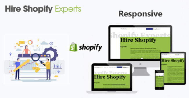 Hire Shopify Expert