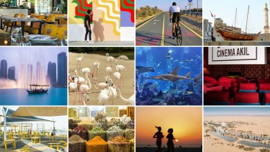 Photo of Top-Rated Tourist Attractions – Activities to do in Dubai