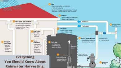 Photo of Everything You Should Know About Rainwater Harvesting.