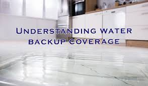 Photo of Tips for Water Backup Coverage