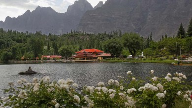 Photo of Fairy meadows! A heaven on the earth