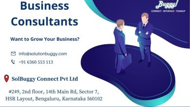Photo of What Does a Business Consultant Do?