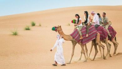 Photo of Trip to Desert Safari in Dubai – Is it Worth it?
